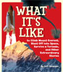 What It's Like to Climb Mount Everest, Blast Off Into Space, Survive a Tornado, and Other Extraordinary Stories by Jeff Belanger